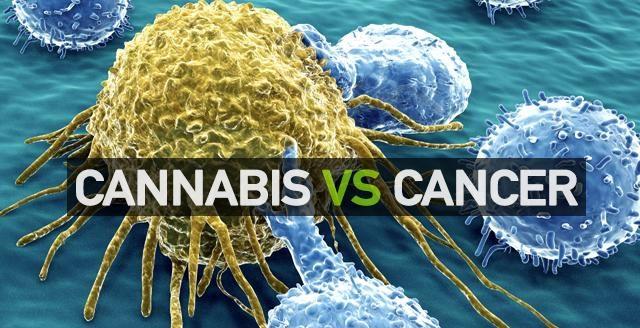 Cannabis clinic Canada